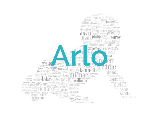 Famous People with Name Arlo - Baby Names and Name Meanings