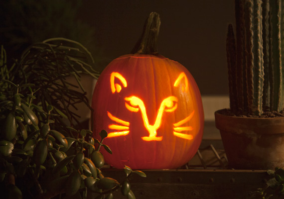 How to carve a pumpkin perfectly free pumpkin carving templates